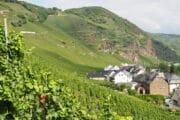 Wijngaarden langs de hellingen langs de Moezel