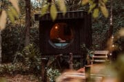 Tiny house Bos in het bos
